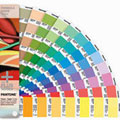 Picture of the pantone paint palette